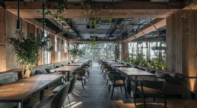 Par Bar³ / Urban Jungle in Kyiv, Ukraine by YODEZEEN Architects